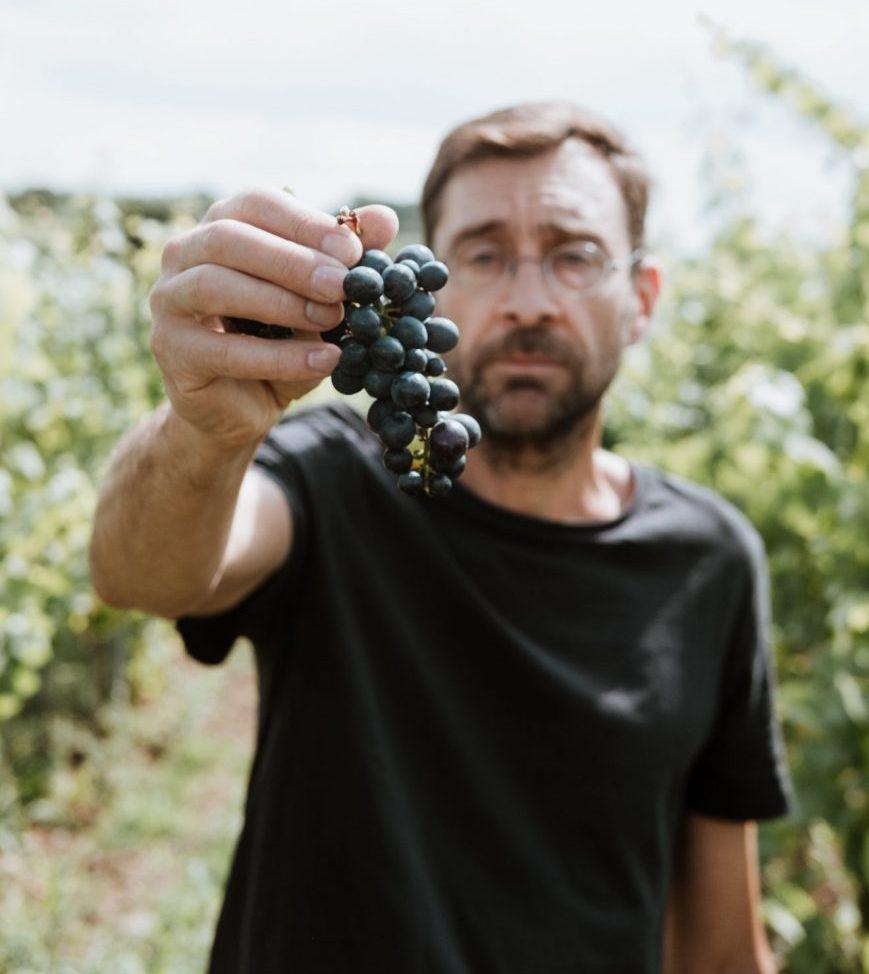 foto wijnboer Kampenberg